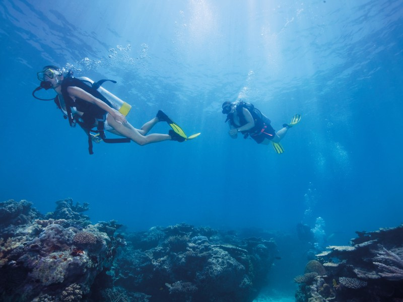 Divers in the Whitsundays
