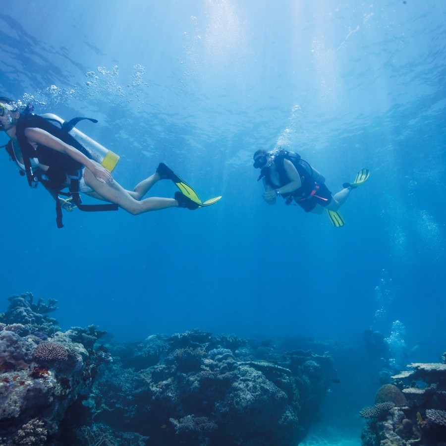 Scuba Diving | Great Barrier Reef | Explore Group